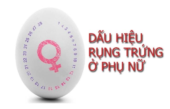 8 Dấu Hiệu Rụng Trứng Bạn Nhất Định Phải Biết Nếu Muốn Sớm Có Thai