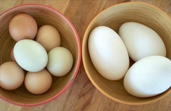 Bà Bầu Ăn Trứng Ngỗng Có Giúp Cho Con Thông Minh Hơn?