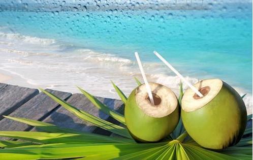 Mẹ Bầu Mới Có Thai Uống Nước Dừa Được Không?